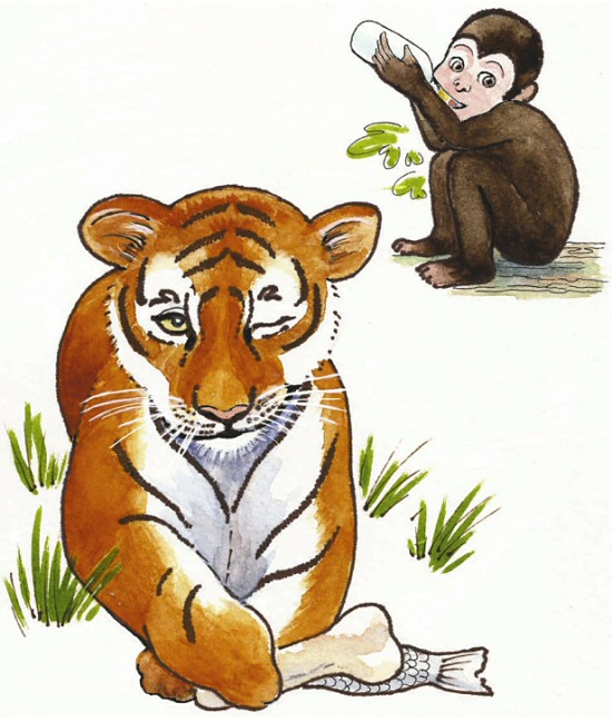 Tiger and monkey illustration